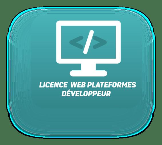 licence développeur plateformes web