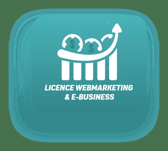 Licence Webmarketing & E-business