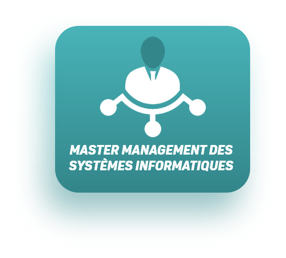 master-management-informatiques